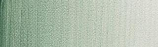 Akwarele Winsor&Newton Professional 5ml - 637 Terre verte
