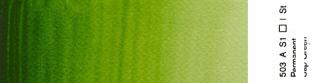 Akwarele Winsor&Newton Professional 5 ml - 503 Permanent Sap Green s. 1