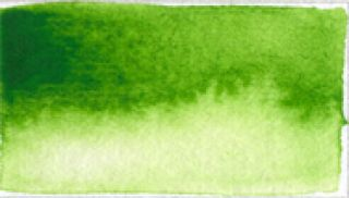Farba akwarelowa Aquarius - 252 Sap Green Light