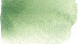 Farba akwarelowa Aquarius  - 105 Green Earth