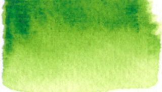 Farba akwarelowa Aquarius  - 233 Sap Green