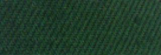 Barwnik do tkanin bez gotowania Argus - Zielony