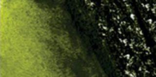 Ołówek akwarelowy kolorowy Graphitint - 10 Meadow