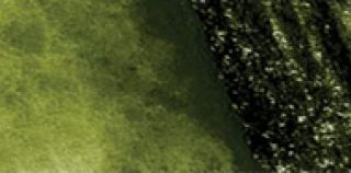 Ołówek akwarelowy kolorowy Graphitint - 11 Ivy