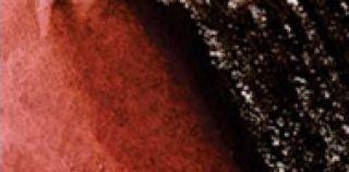 Ołówek akwarelowy kolorowy Graphitint - 17 Autumn Brown