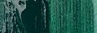 Farba uniwersalna Fevicryl 50ml - 06 Dark Green