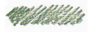 Pastela sucha w kredce Gioconda - 24 Olive Green Dark