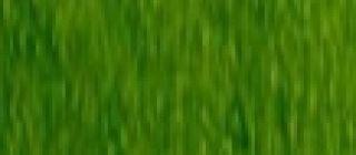 Kredka Procolour - 50 Moss Green