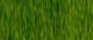 Kredka Procolour - 51 Foliage