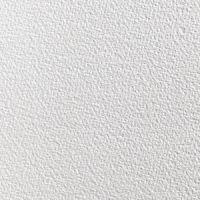 Papier akwarelowy Saunders Waterford 57x76cm 5ark - 190g, white RGH