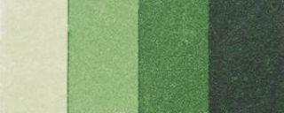 Tusz kalkograficzny 60ml - 42 Zieleń złocista