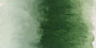Farba olejna Williamsburg 37ml - 013 Italian Terra Verte