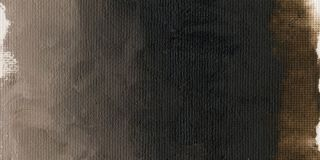 Farba olejna Williamsburg 37ml - 045 French Burnt Umber