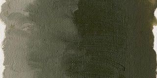 Farba olejna Williamsburg 37ml - 1021 Bohemian Green Earth