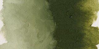 Farba olejna Williamsburg 37ml - 1122 Earth Green