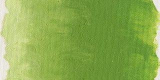 Farba olejna Williamsburg 37ml - 1146 Cadmium Green Light