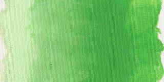 Farba olejna Williamsburg 37ml - 1163 Permanent Green Light