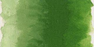 Farba olejna Williamsburg 37ml - 1186 Cadmium Green