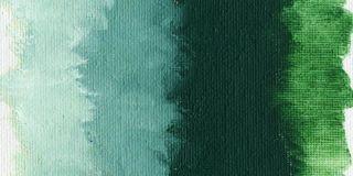 Farba olejna Williamsburg 37ml - 1250 Cobalt Green