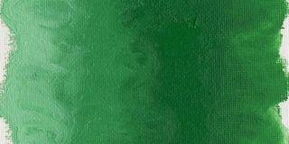 Farba olejna Williamsburg 37ml - 1263 Permanent Green