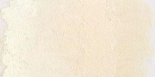 Farba olejna Williamsburg 37ml - 161 Zinc buff