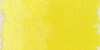 Farba olejna Williamsburg 37ml - 246 Cadmium Lemon