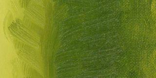 Farba olejna Williamsburg 37ml - 322 Olive Green