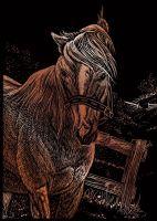 Wydrapywanka A5 - Koń