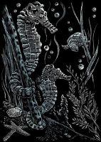 Wydrapywanka A5 - Koniki morskie