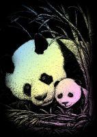 Wydrapywanka A5 - Panda